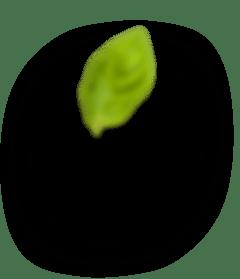 Электронная площадка «Садоводо»