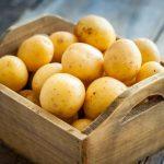 Болезни-картофеля:-осматриваем-клубни,-определяем-проблему-и-лечим,-все-проблемы-с-фото