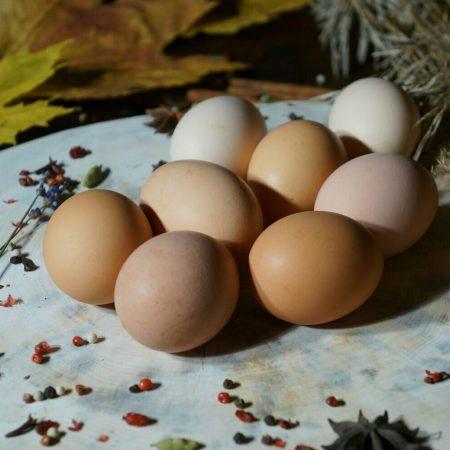 Яйца куриные, 10 шт.